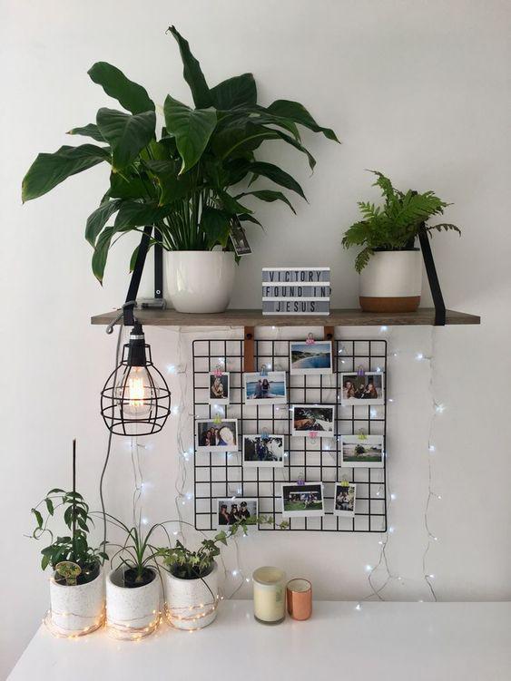 Uni room article. Image of plants on a desk.jpg