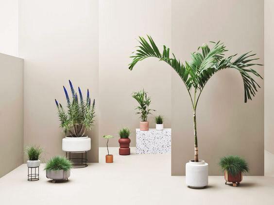 Find_Scandi_Design_Online_Bolia.jpg
