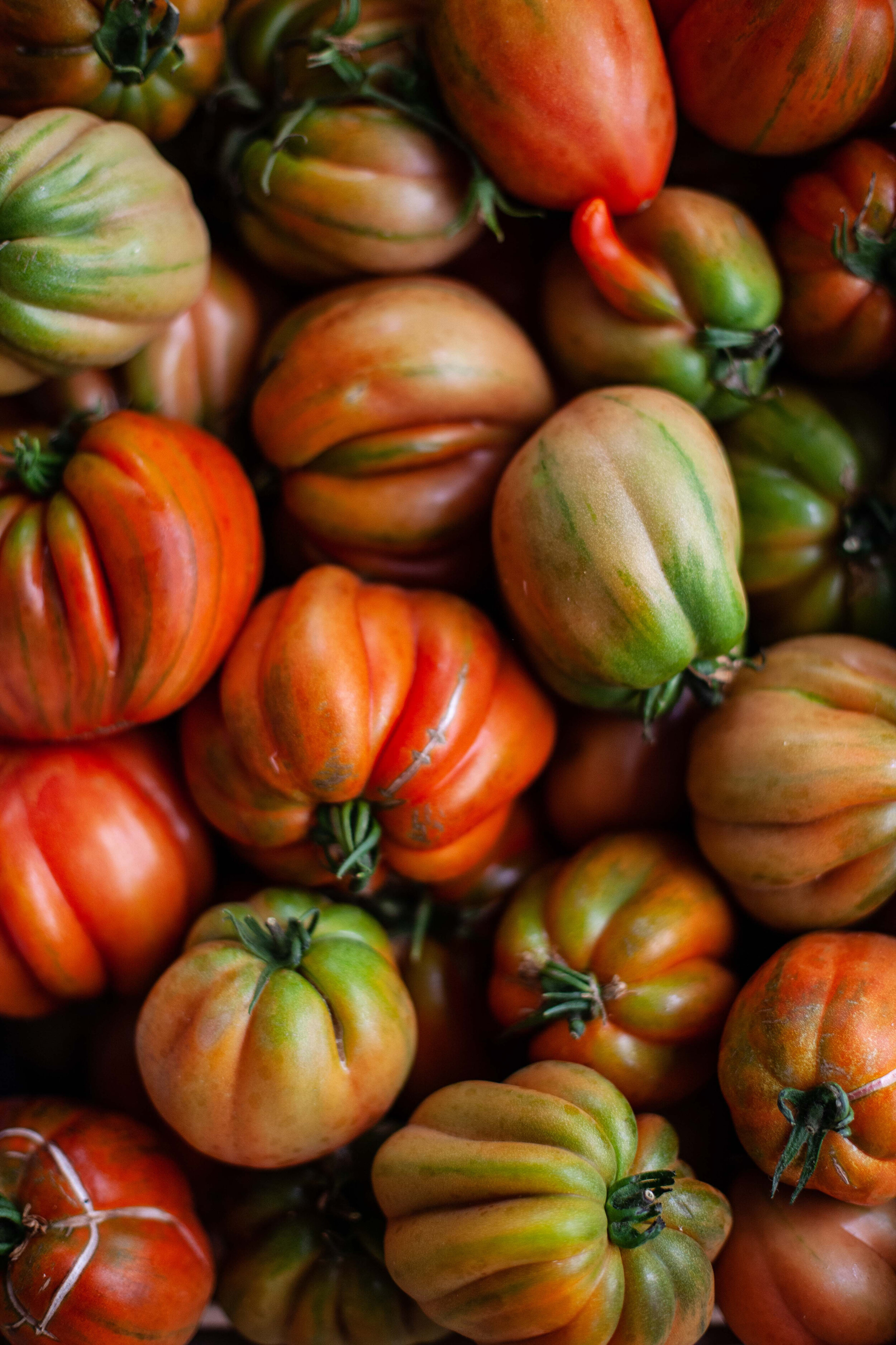 Foods that will save the planet article. Image of tomatoes.jpg