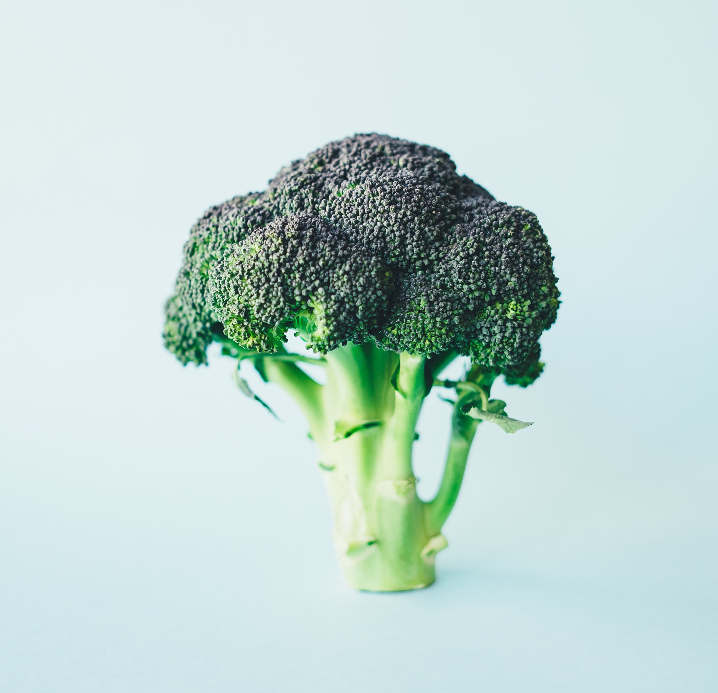 Foods that will save the planet article. Image of broccoli.jpg