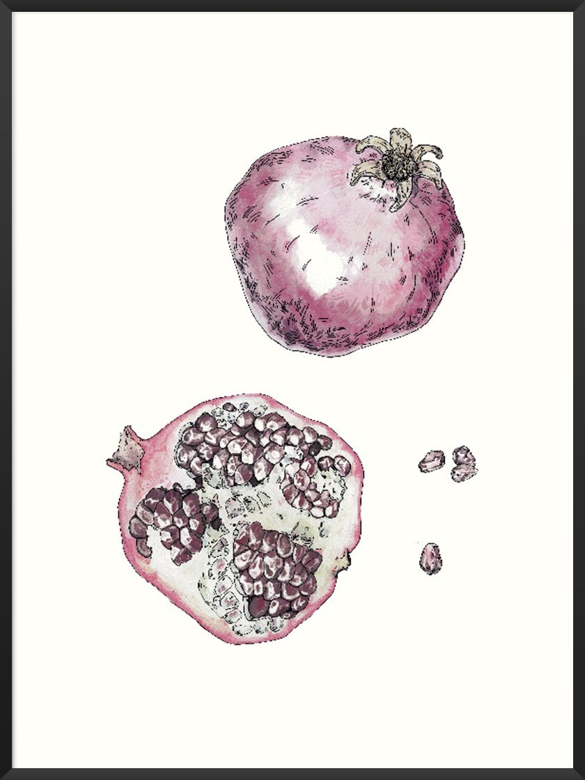 Foods that will save the planet article. Image of Vintage Botanical Pomegranate poster