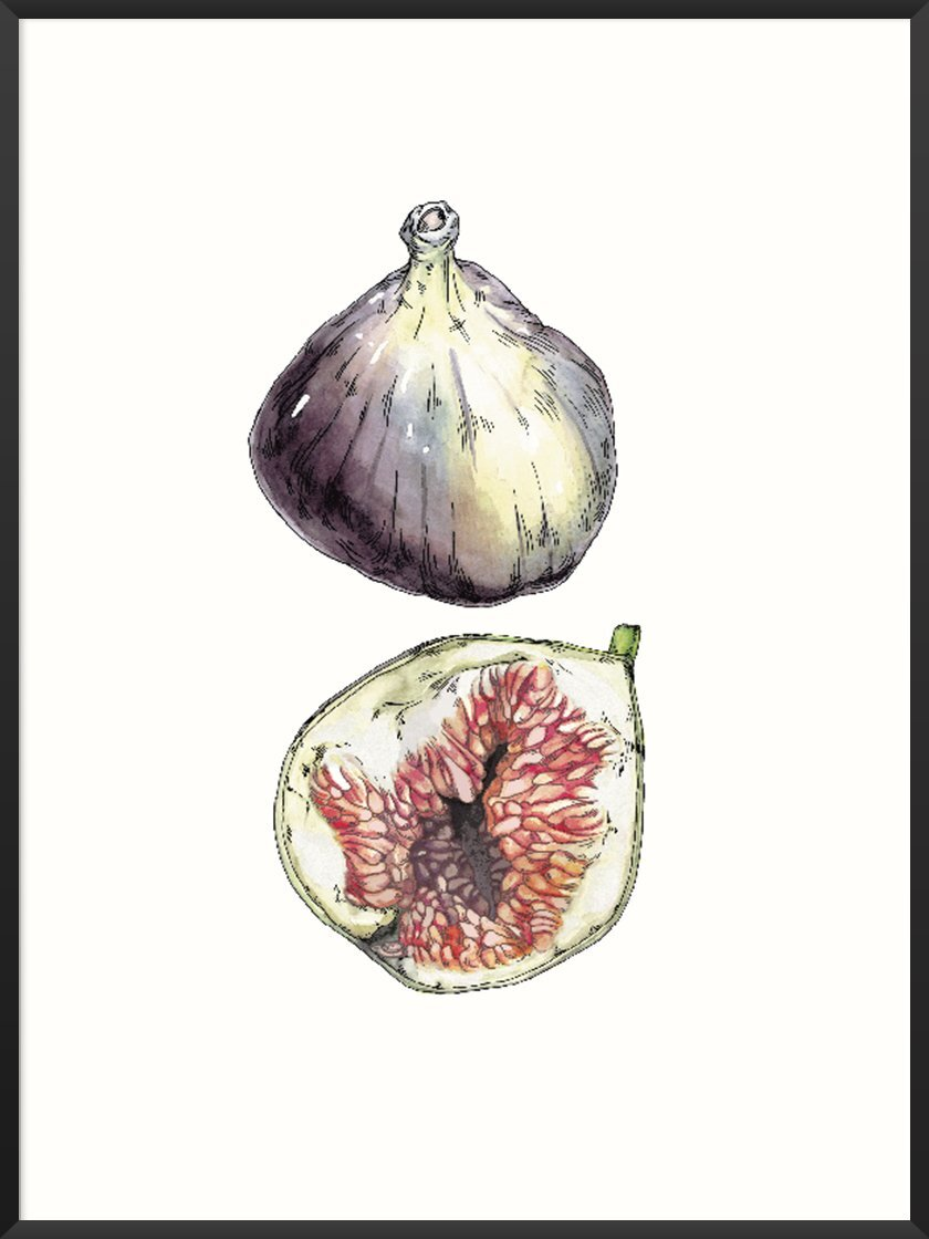 Scandinavian Kitchen article. Image of Figs poster