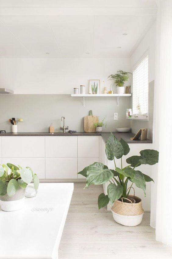 Scandinavian Kitchen article. Image of minimalist kitchen with plants.jpg