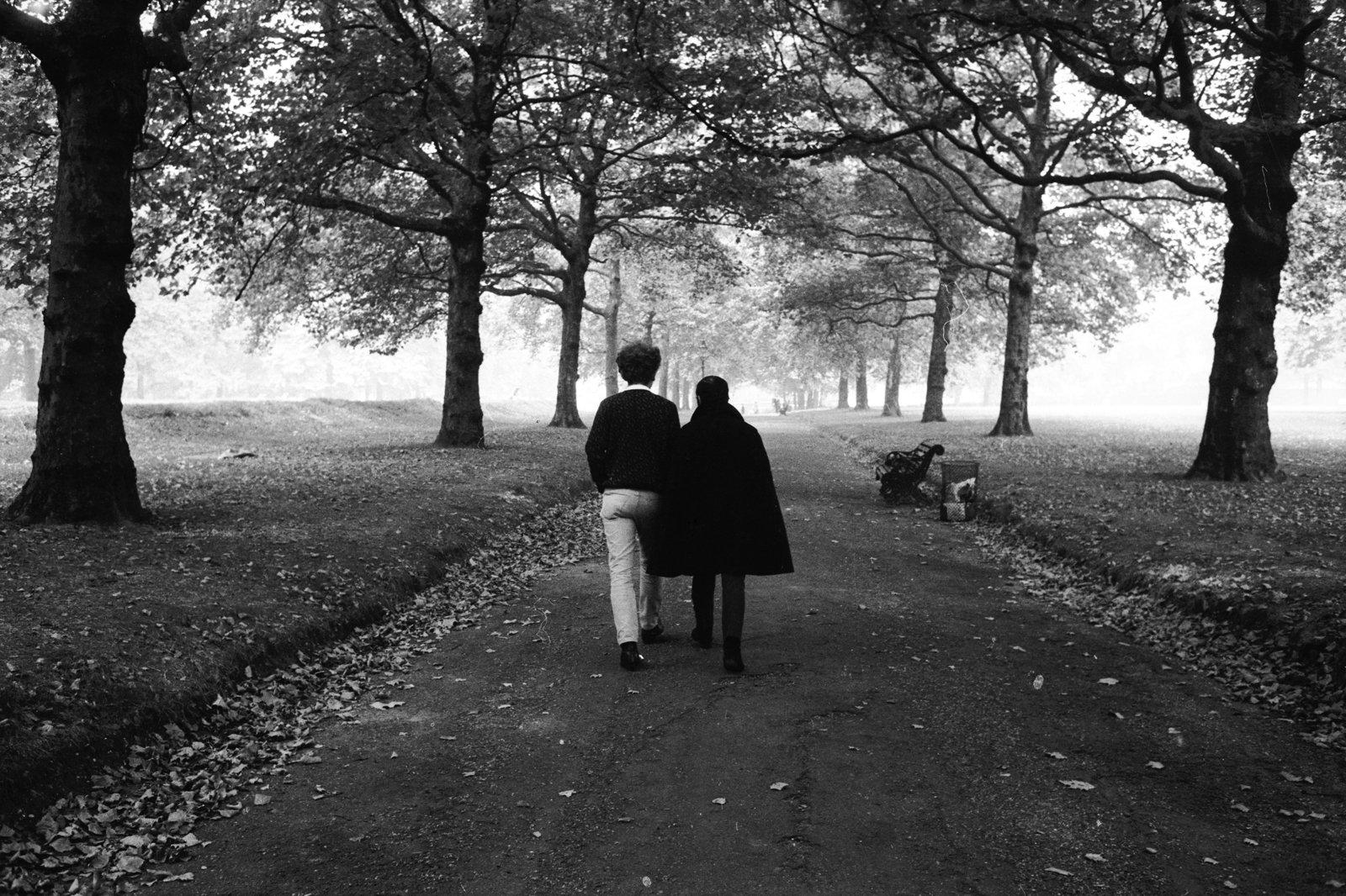 Simon & Garfunkel - The Concert In Central Park.jpg