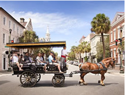 OLD SOUTH CARRIAGE TOURS - Since 1983, the owners of Old South Carriage Tours have given visitors to Charleston a first-class tour of the historic city. It is a perfect combination of fun and learning. Be on the lookout for the red sashes.