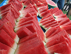 Annual Hampton County Watermelon Festival - For over 70 years, the residents of Hampton County have set aside one week in the summer that is dedicated to the watermelon. This one-of-a-kind festival features petting zoos, concerts, a street dance, 5K run and, of course, a watermelon eating contest.