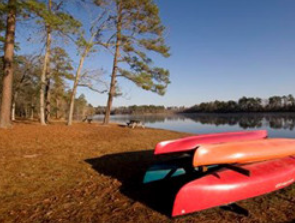 Little Pee Dee State Park - This 835-acre park features Lake Norton, which is a perfect spot for fishing, boating and canoeing. A nature trail is also available for those looking to explore this tranquil stay for the night at the area's campground.