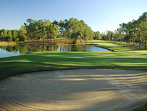 Golf - Don't forget to pack your clubs before making the trek to Santee Cooper Country. You will find 13 championship golf courses to practice your swing. Many have been ranked by Golf Digest's