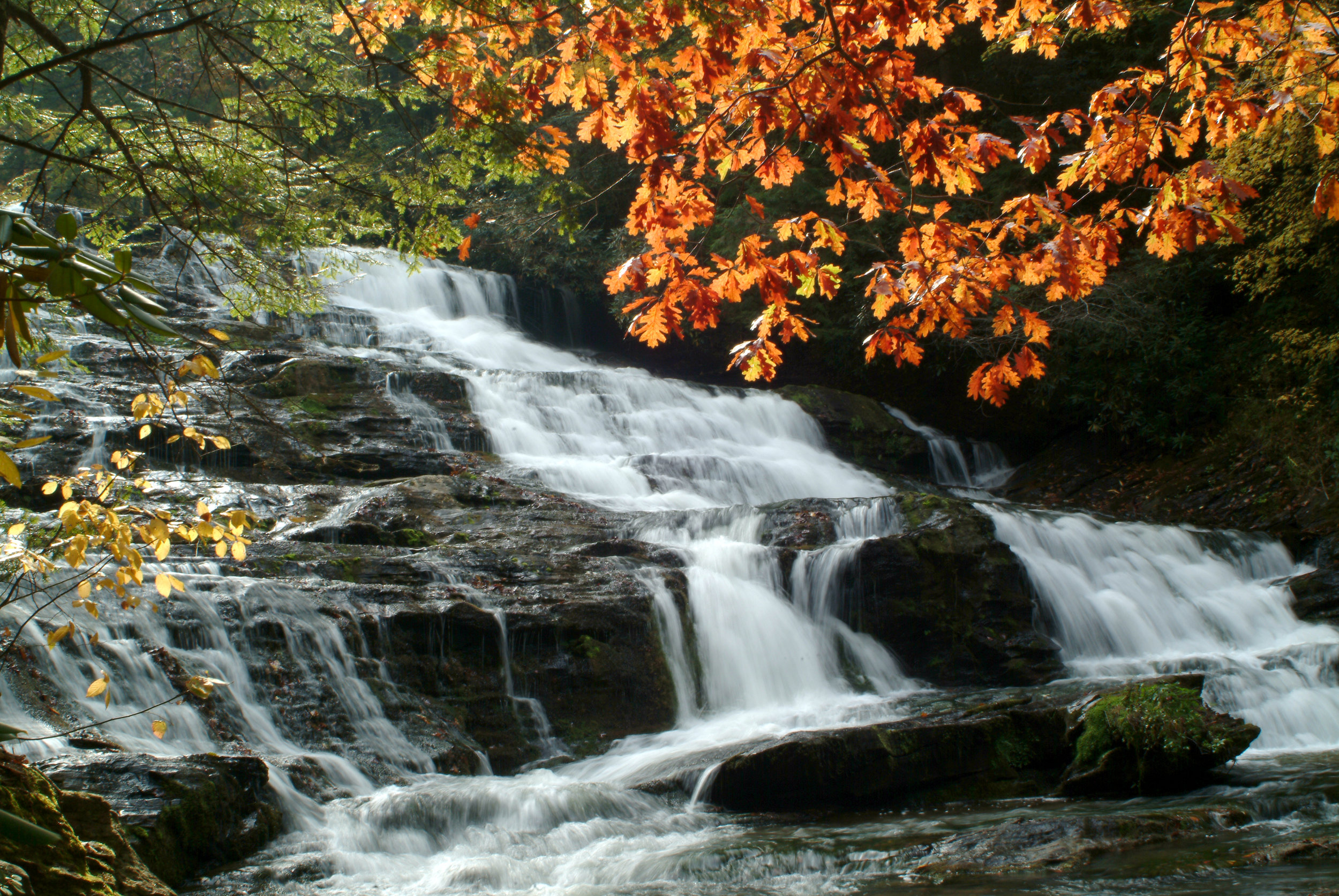 Brasstown Falls - Sumter National Forest.jpg