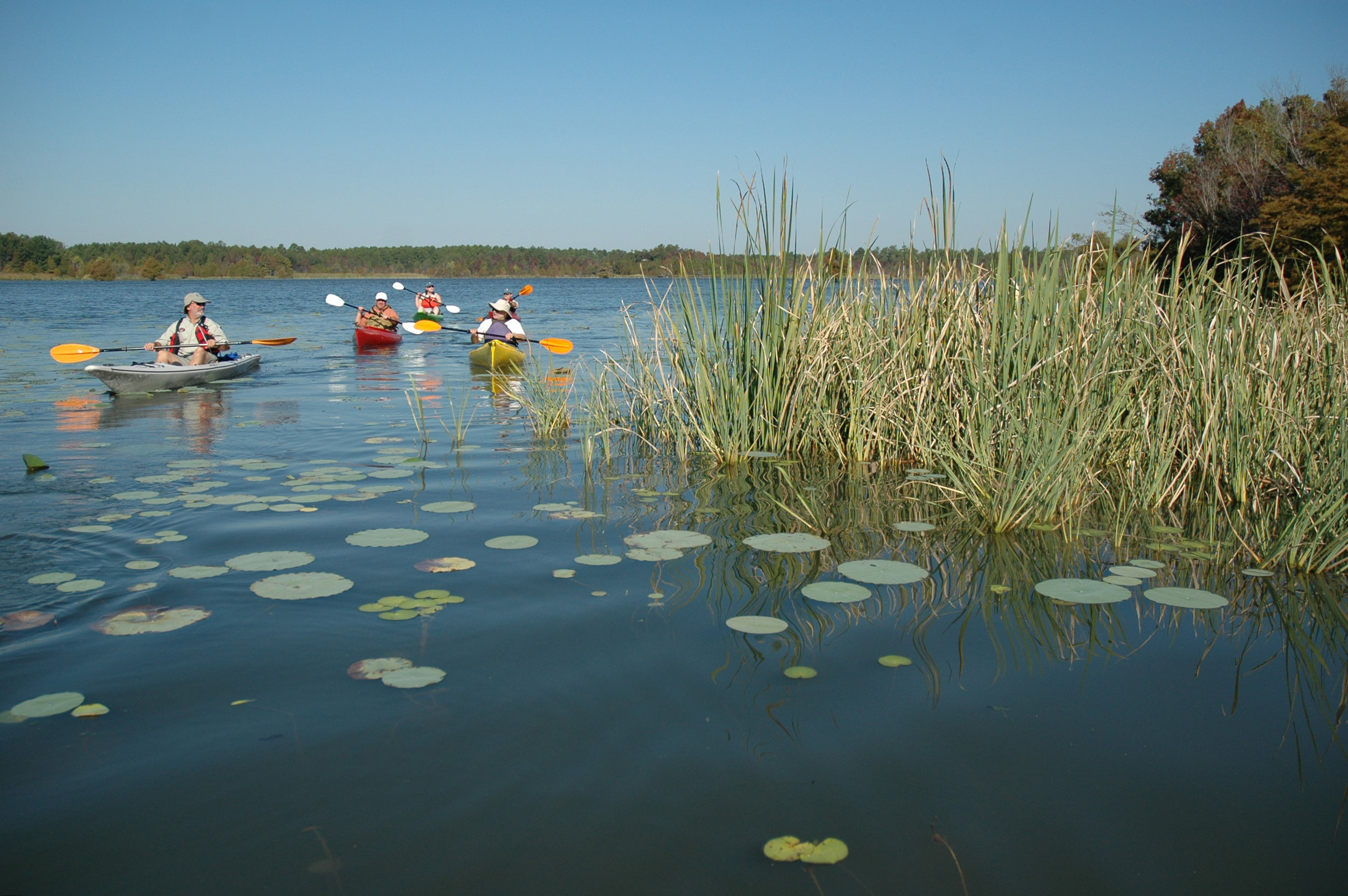 Kayaking 029; PJ; 175; JA07.jpg