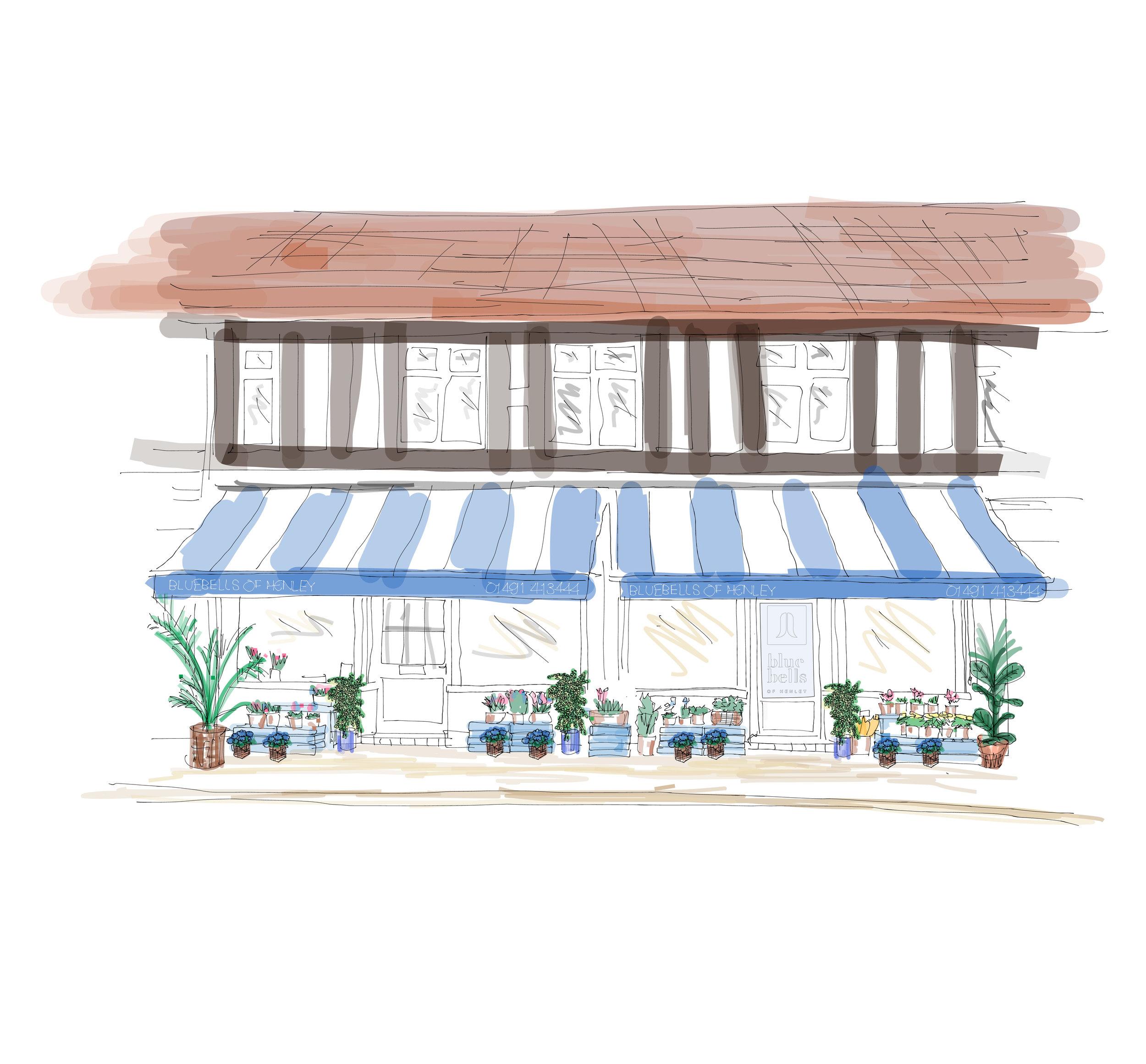 bluebells-of-henley-florist-flowers-shop-sketch-01a-01.jpg