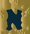 nfv emblem small.png