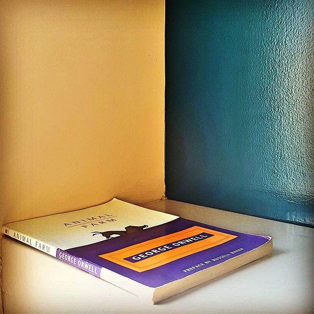 Books starting at $1 at #thebookstore #sanjuancapistrano #friendsofthelibrary                  #bookoftheday #georgeorwell #animalfarm #literature #library #Bookstore #bookworm #book #read