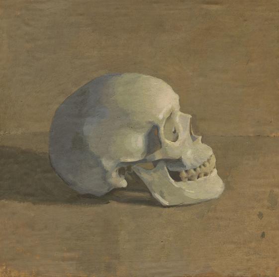 Skull in Lamplight