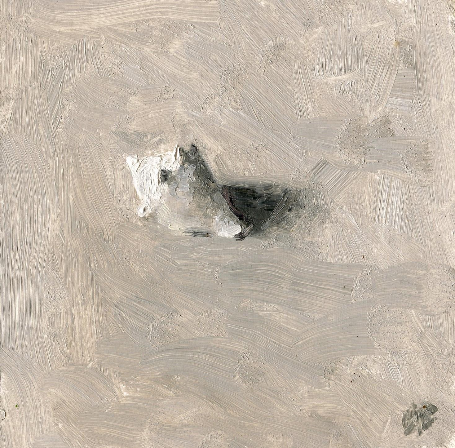 Gray Day - Tiny Shell
