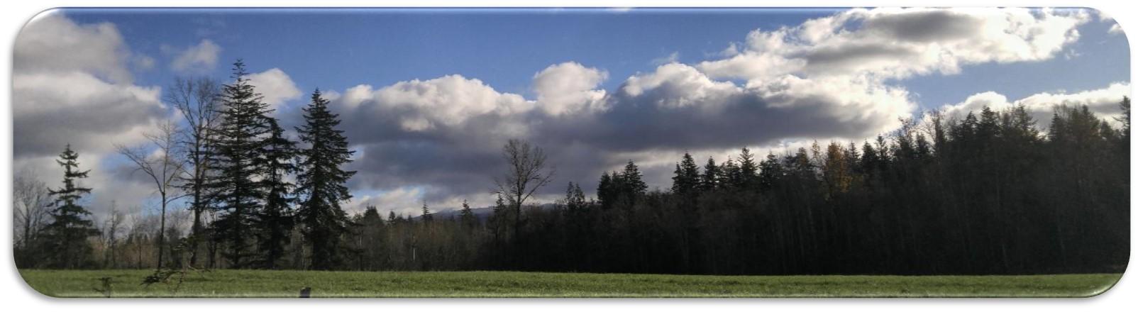 RestoreProcess_countryside.jpg