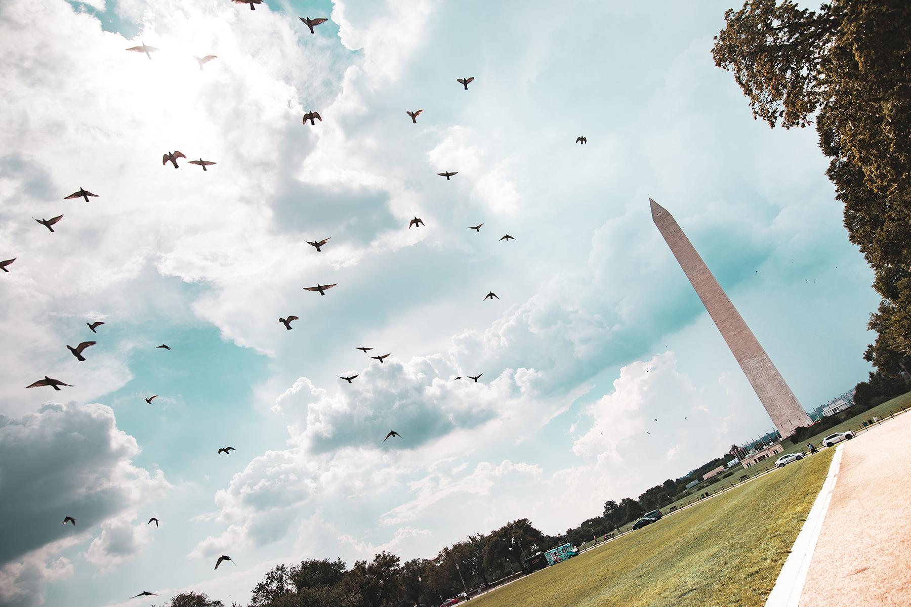 Washington 041.jpg