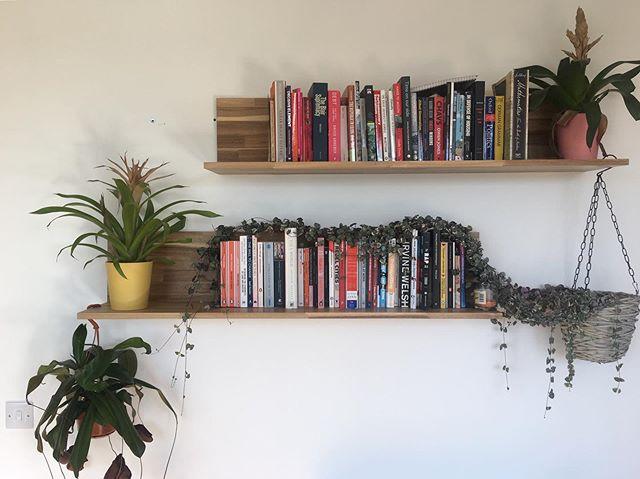How great are house plants? 🤩 #urbanjungle #plantsarefriends