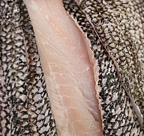 Black Bass (Seasonal)