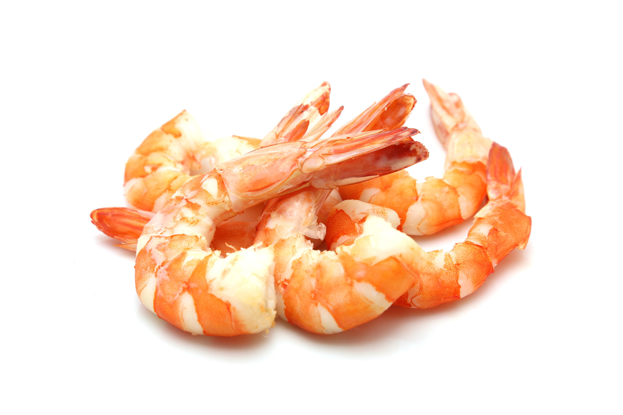 COOKED SHRIMP.jpg