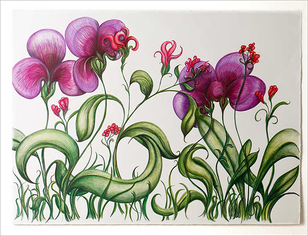 "Iris Garden , colored pencil on BFK Reeves, 26"" x 30"""