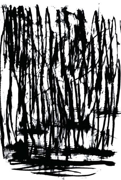 Bramble , oil bar on hot press Fabriano paper, 4' x 6'