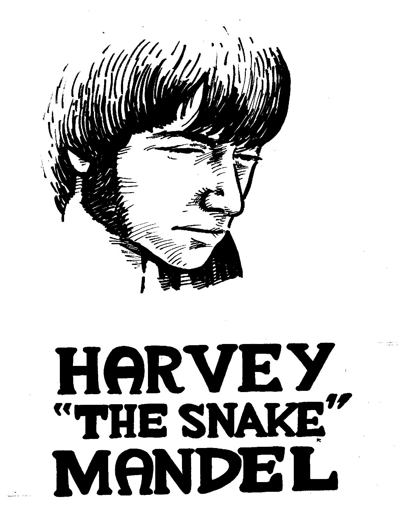 $300, Harvey Mandel and logo used in Secret History of Chicago Music
