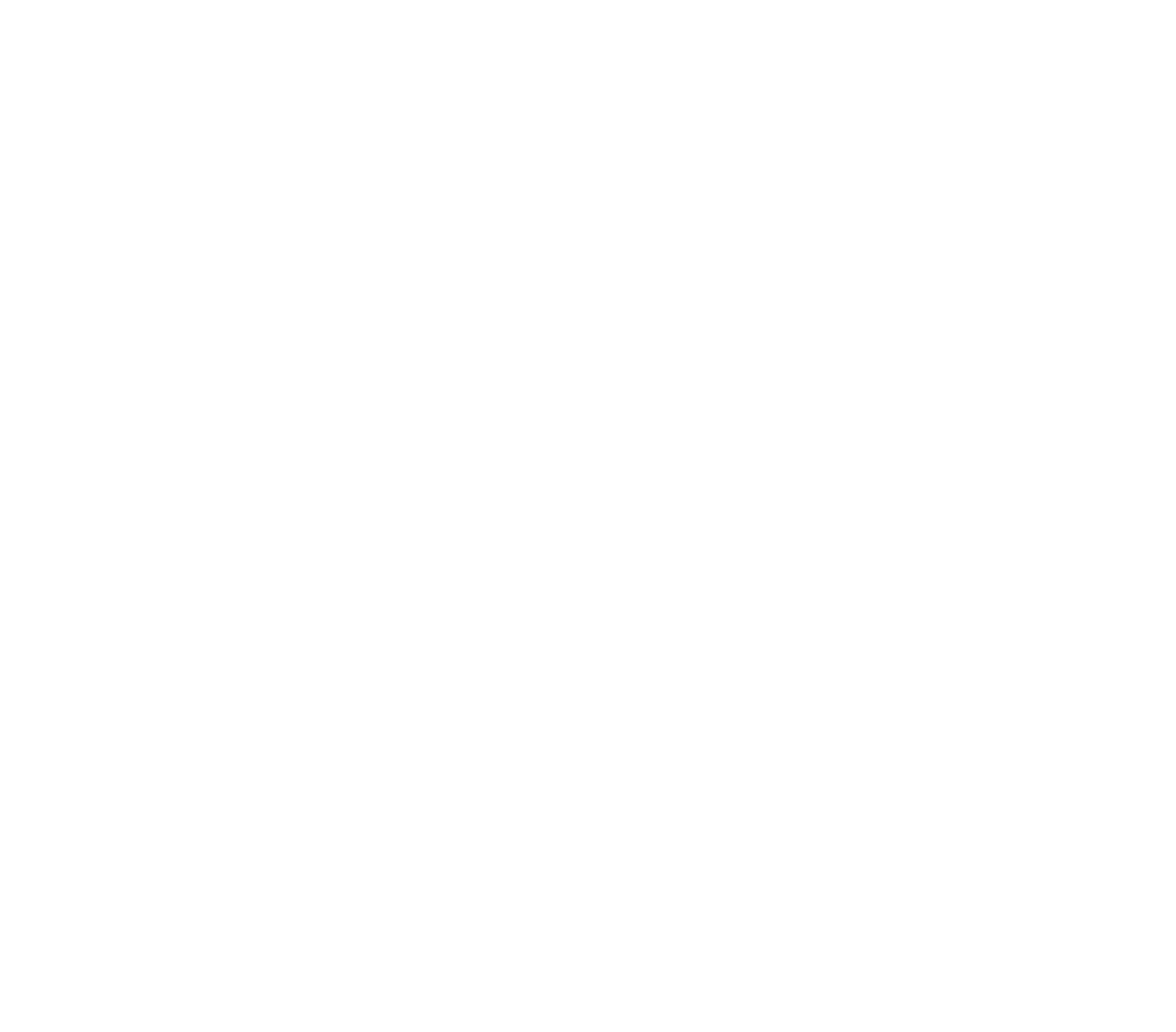 Minnesota Mental Health Services White.png