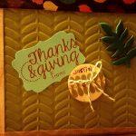 Thanksgiving-15-150x150.jpg