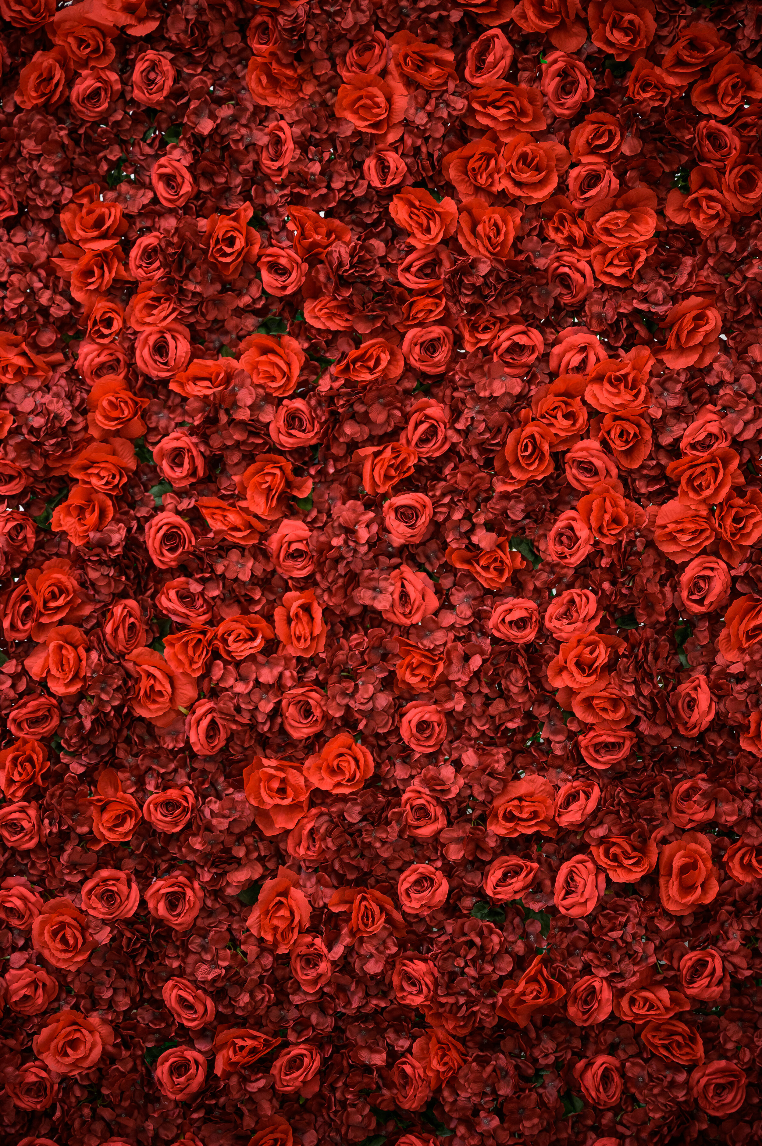 Flower Wall Rental Custom Design Hand Made Floral Backdrops Photo Booth Socal