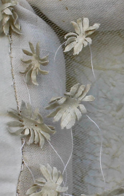 Robinia (detail)