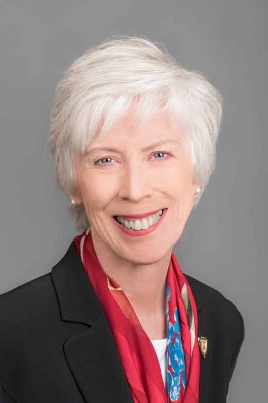 Sharon Pappas, PhD, RN, NEA-BC, FAAN  Chief Nurse Executive, Emory Healthcare Professor, Clinical track and Coordinator of the Health System Leadership Track, DNP Program