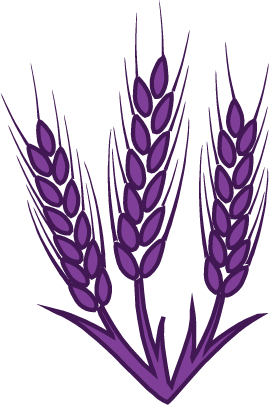 wheat_vector.png