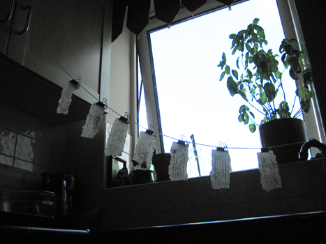 hanging to dry