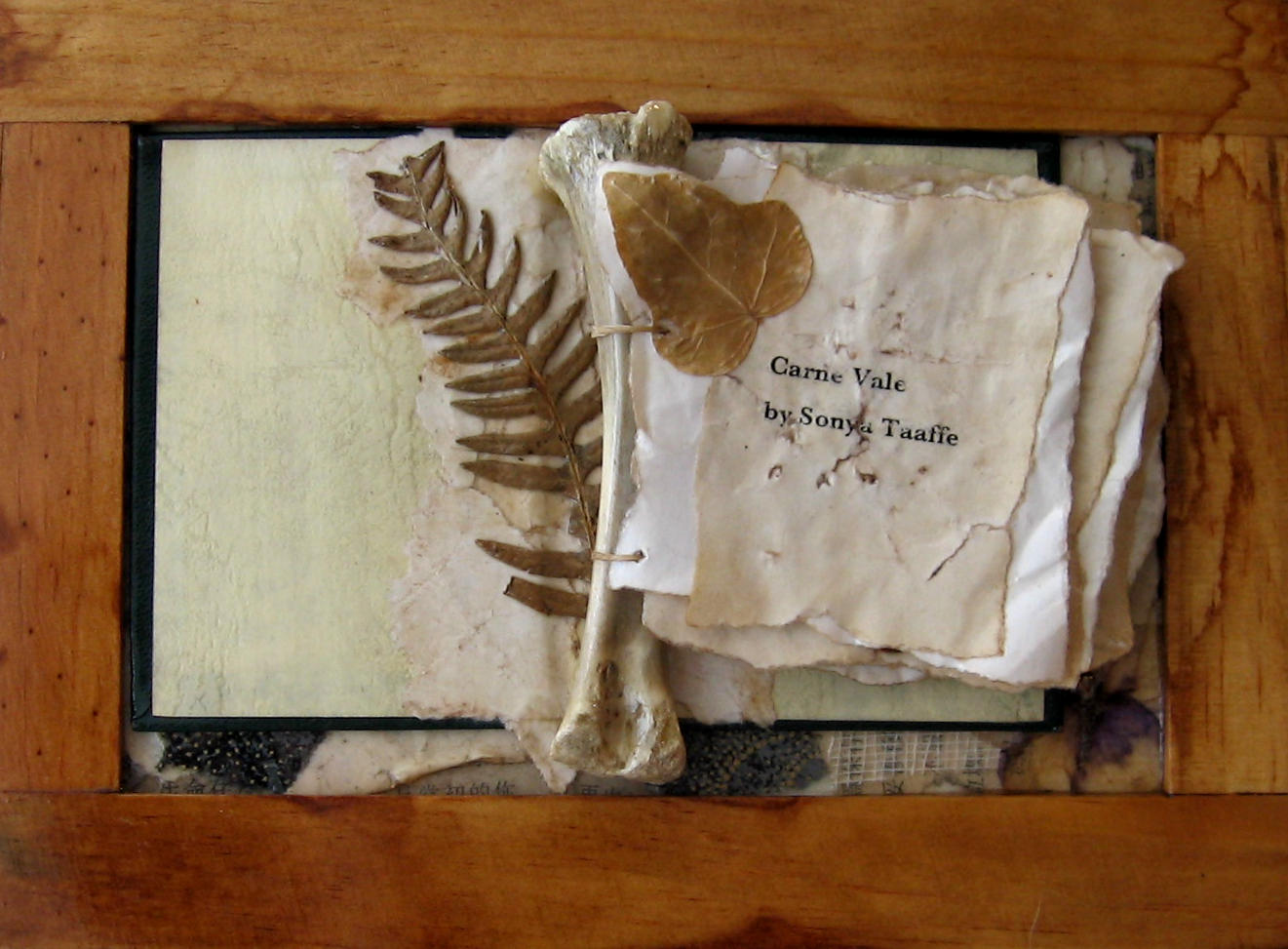 Carne Vale by Sonya Taaffe.  5in x 7in. Bones, dried flowers, dislocated book cover, paper, mull.