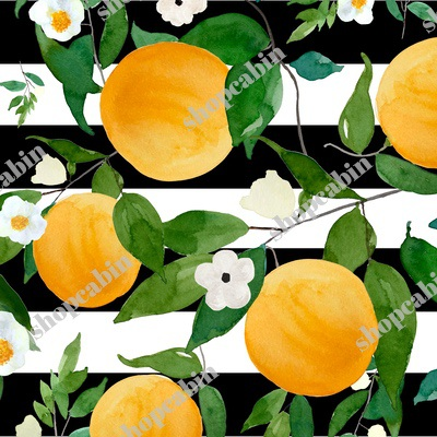 Oranges Black and White Stripes.jpg