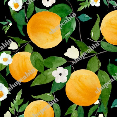 Oranges Black.jpg