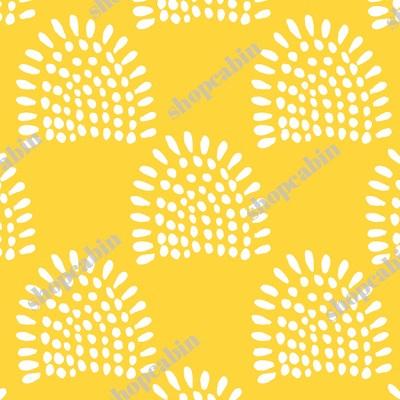 White Sunrise Yellow Back.jpg