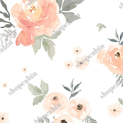 Sweet Blush Roses : Sepia.jpg