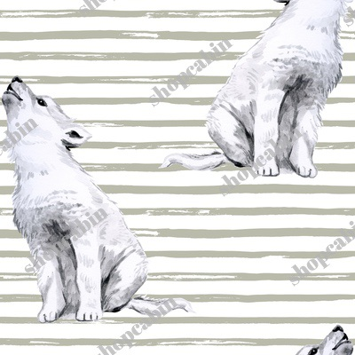 Baby Wolf With Tan Stripes.jpg