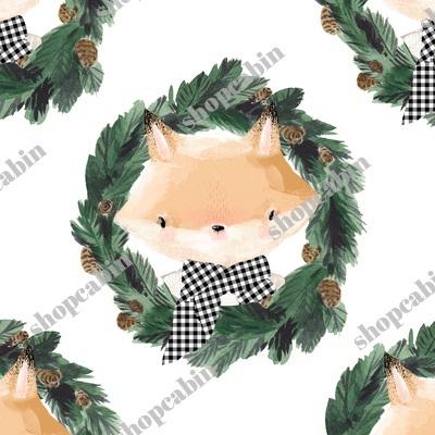 Winter Boy Fox In White.jpg