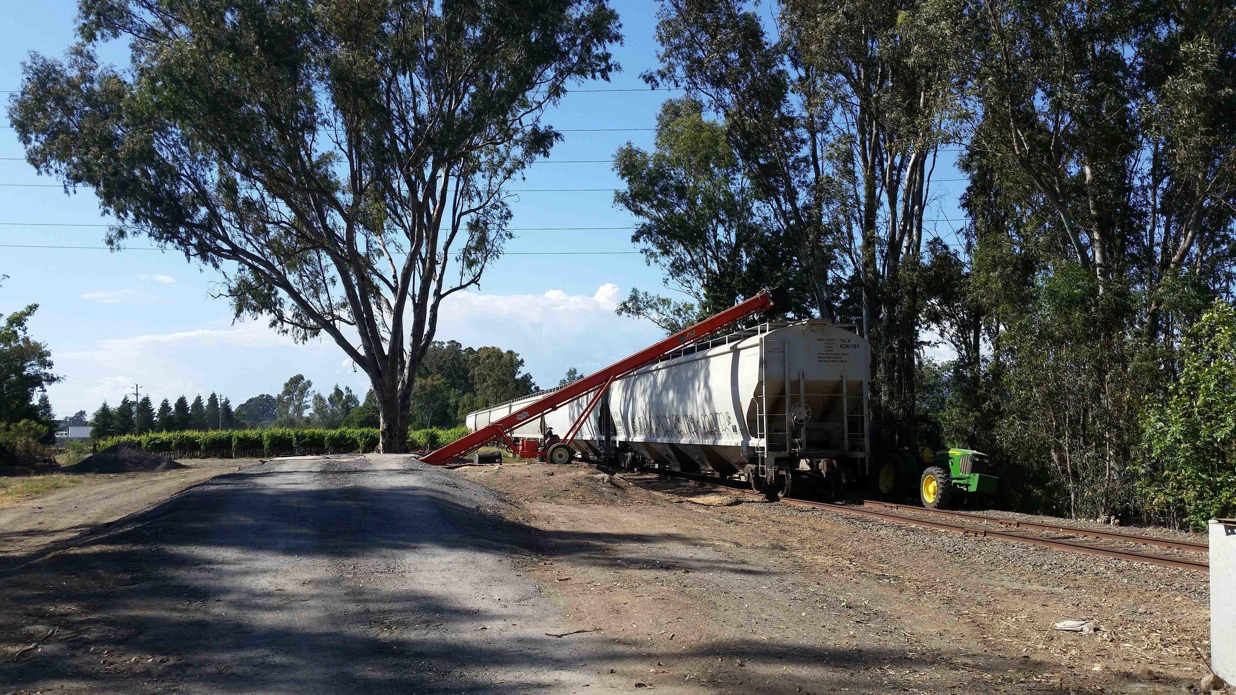 Grain Transloading - We offer grain transloading options in partnership with Poz Trading of Petaluma. Available transload sites include Schellville, Petaluma, and Windsor.