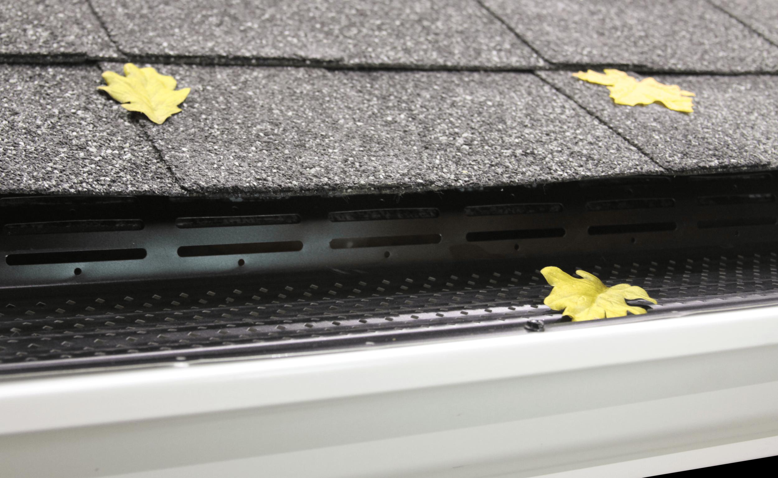 CritterProof by Leaf Supreme™ Black on dark roof