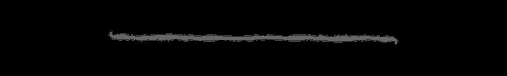 Grey Line.png