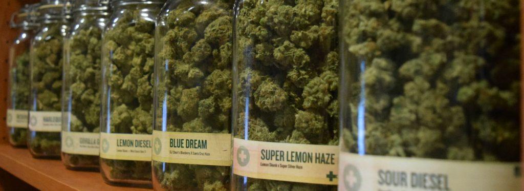 Lemon Diesel Blue Dream Super Lemon Haze Sour Diesel