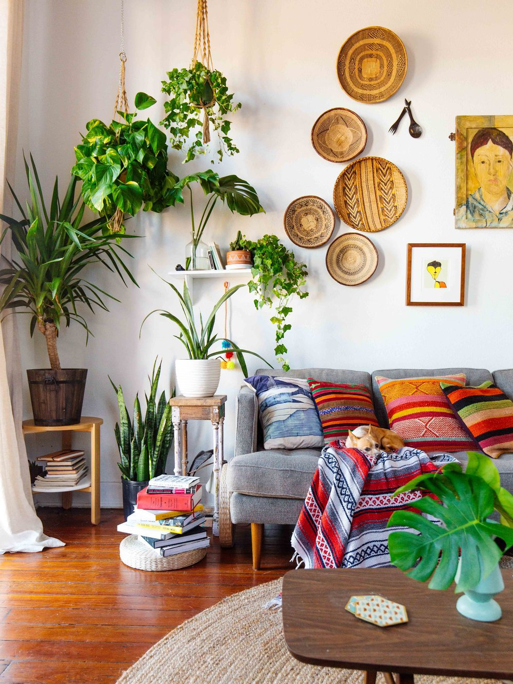 Plants and textured pillows in a tropical living room