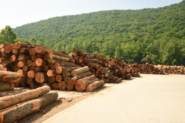 Our Story - Our roots are strong and deep. They go back to 1925 when Joe Rossi began producing lumber, railroad ties, and firewood for the central Connecticut marketplace. Today, nearly a century later, we've become one of the leading global producers of Appalachian hardwoods, including what many consider the finest cherry production anywhere.