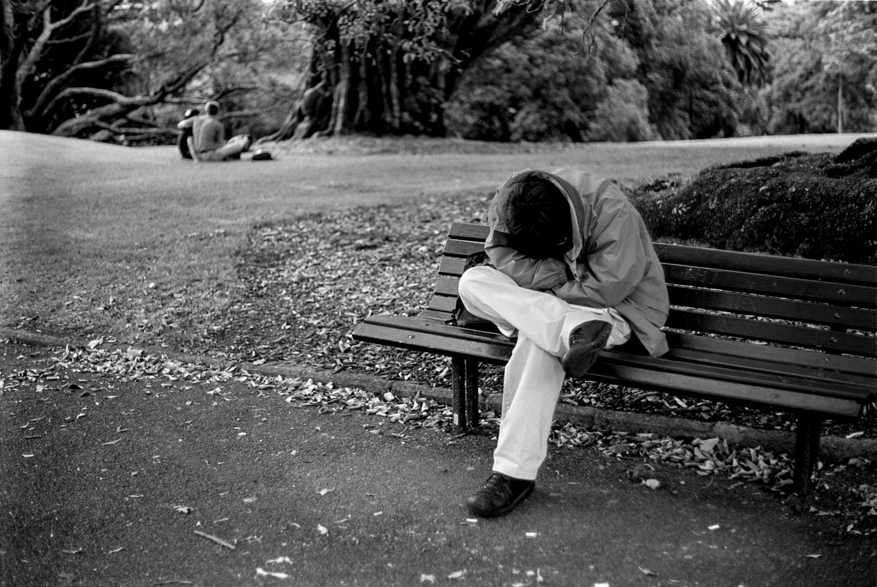 Sleep in the Albert Park, Auckland central
