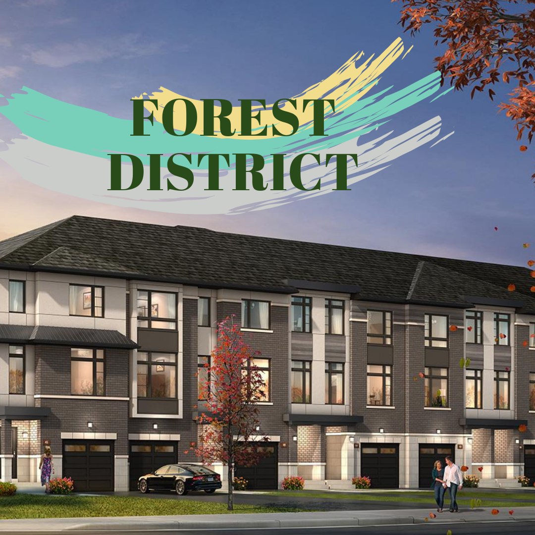 forest district.png