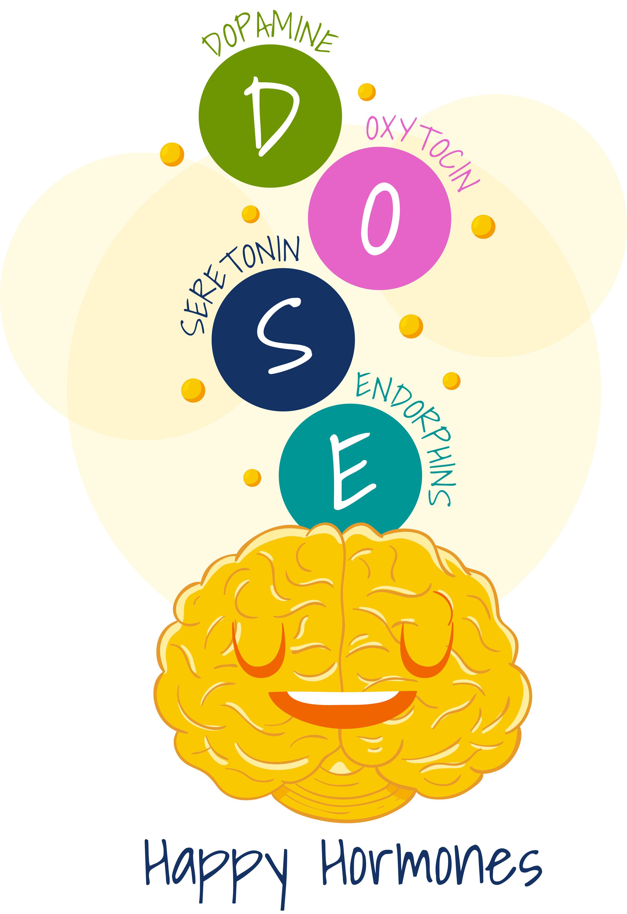 Happiness Habits - Simple habits to increase happy hormones — Traxiom